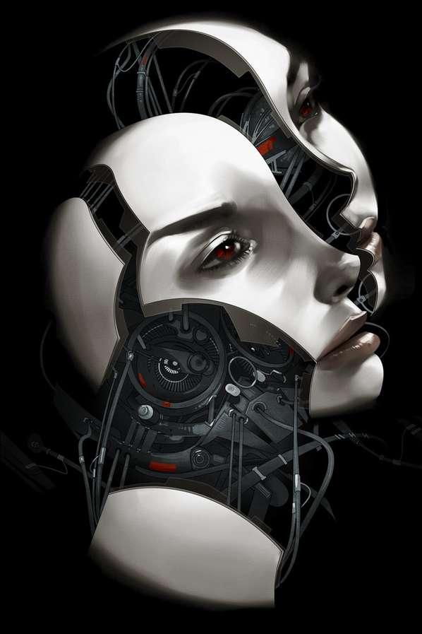 Segmented Cyborg Face