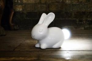 18652_bunny-on-floor